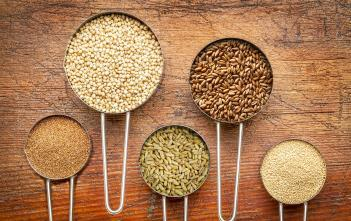 5 quinoa alternatives - other healthy grains; Teff, Sorghum, Kamut (Khorasan), Spelt and Amaranth.