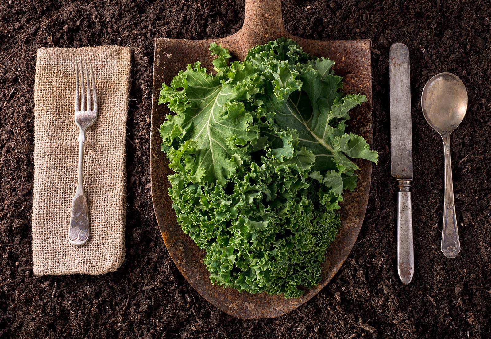 Organic kale served on a shovel