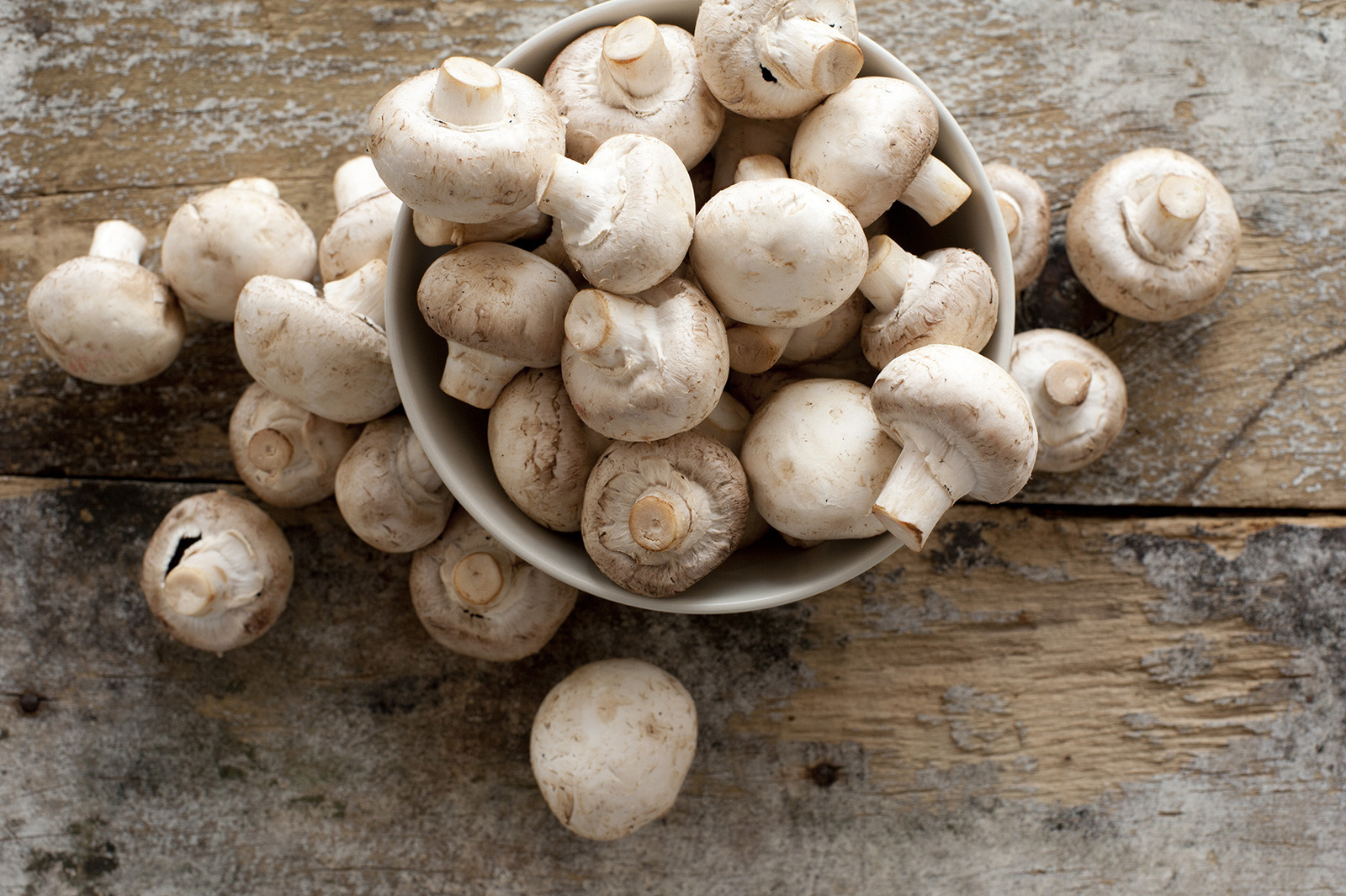 Fresh, whole White Cap mushrooms in a bowl, placed on a rustic wooden table.