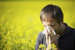 man sneezing from allergies in a field of flowers