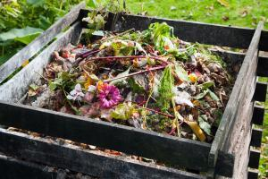 backyard compost bin with food waste