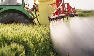 Tractor spraying pesticides on wheat field