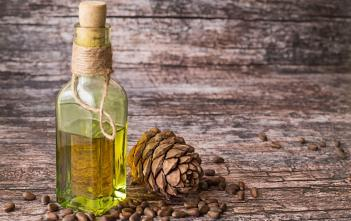 Cedar oil in a glass bottle and a cedar cones with nuts on a brown wooden background