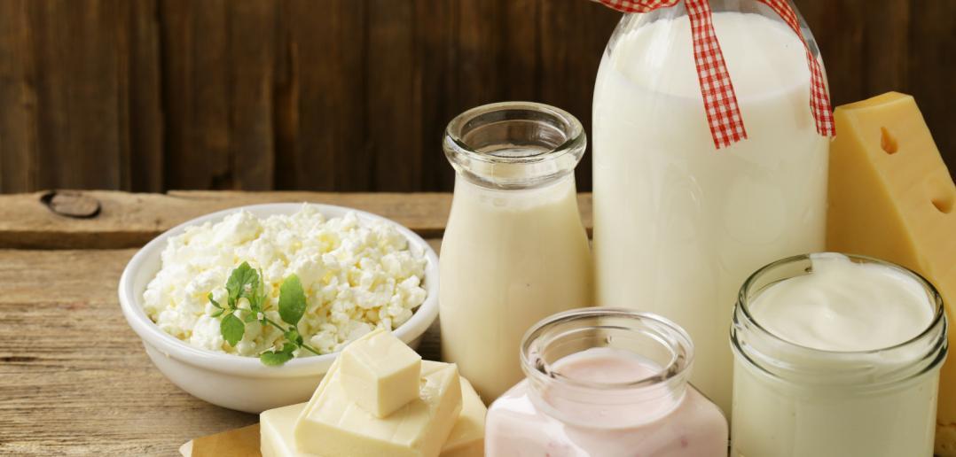 milk, sour cream, cottage cheese, and yogurt