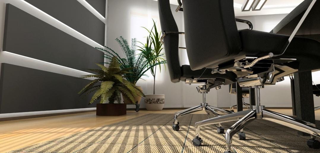 two chairs and a plant in an office