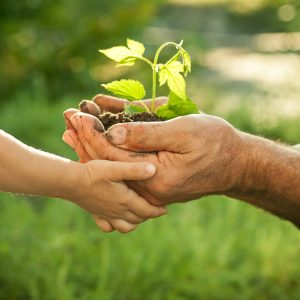 child and senior holding plant