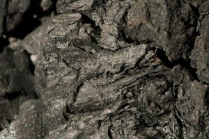 closeup of charcoal found in terra preta