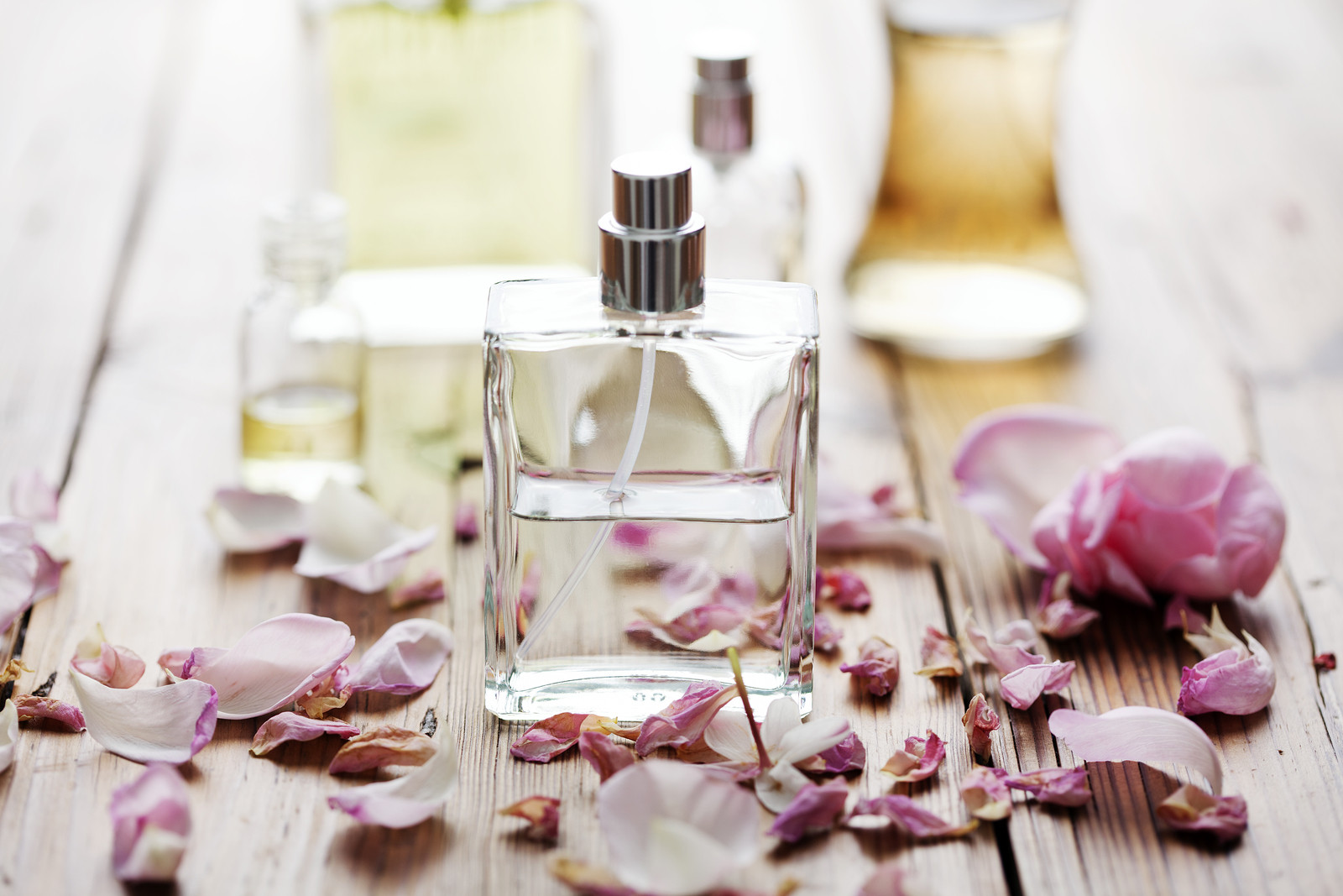 selection of natural perfume bottles surrounded by flower petals