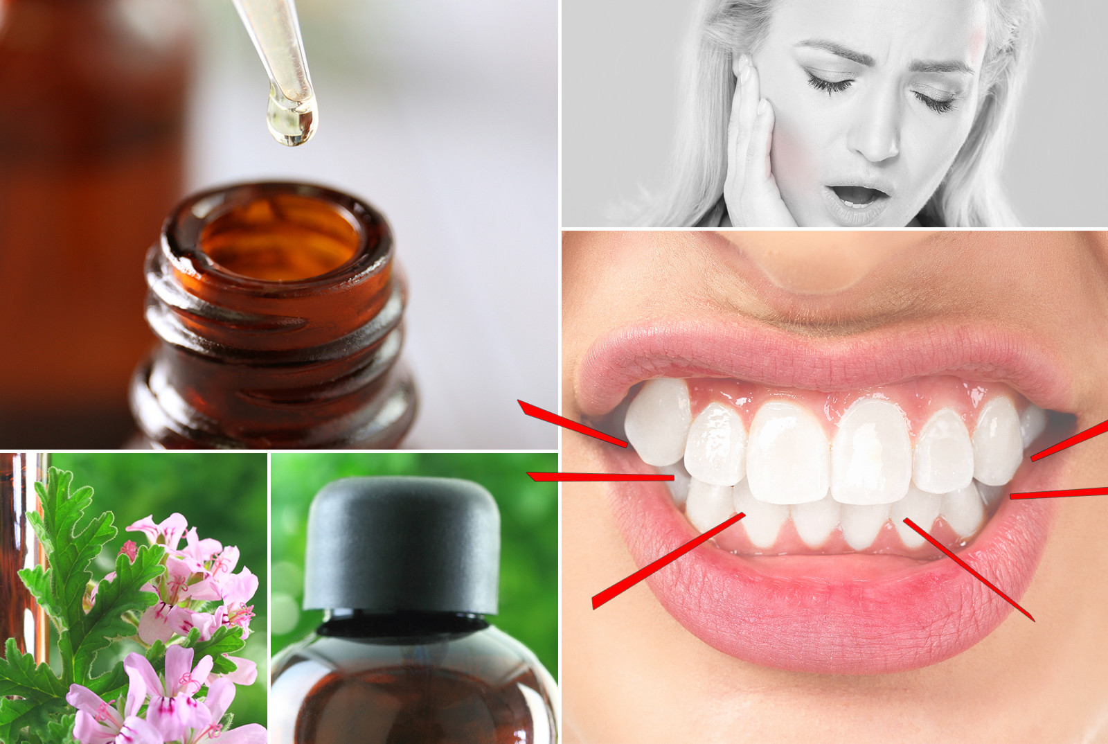 12 Best Essential Oils For Teeth Grinding Naturalcave