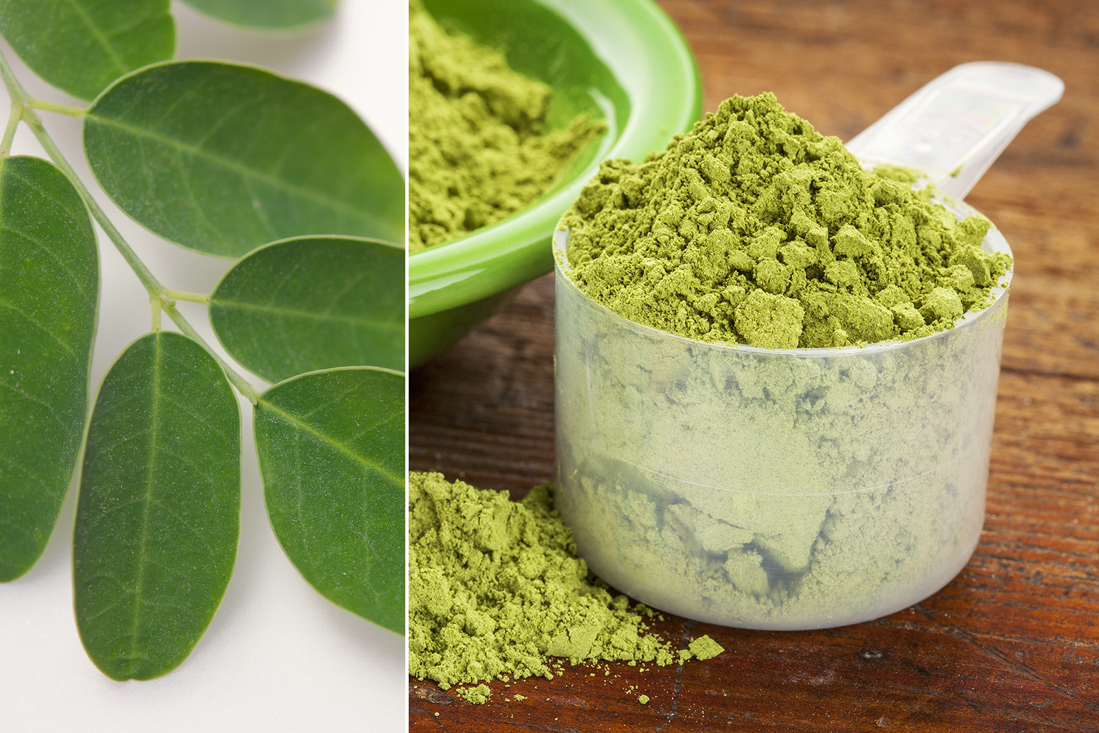 Everything You Need To Know About Moringa Leaf Powder 19
