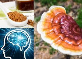 Everything You Need To Know About Reishi Mushroom Powder Before (and after) Buying It