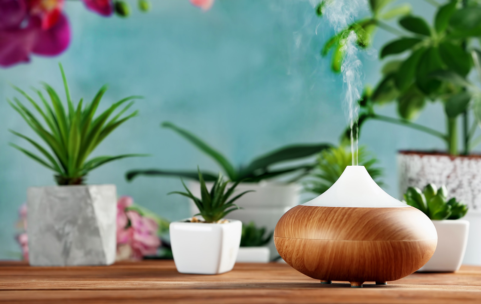 An essential oil diffuser (can be used when treating clogged ears with essential oils.)
