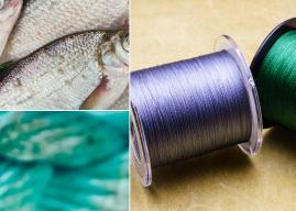 Top 12 Best Braided Fishing Lines (+ What to Know Before Buying)