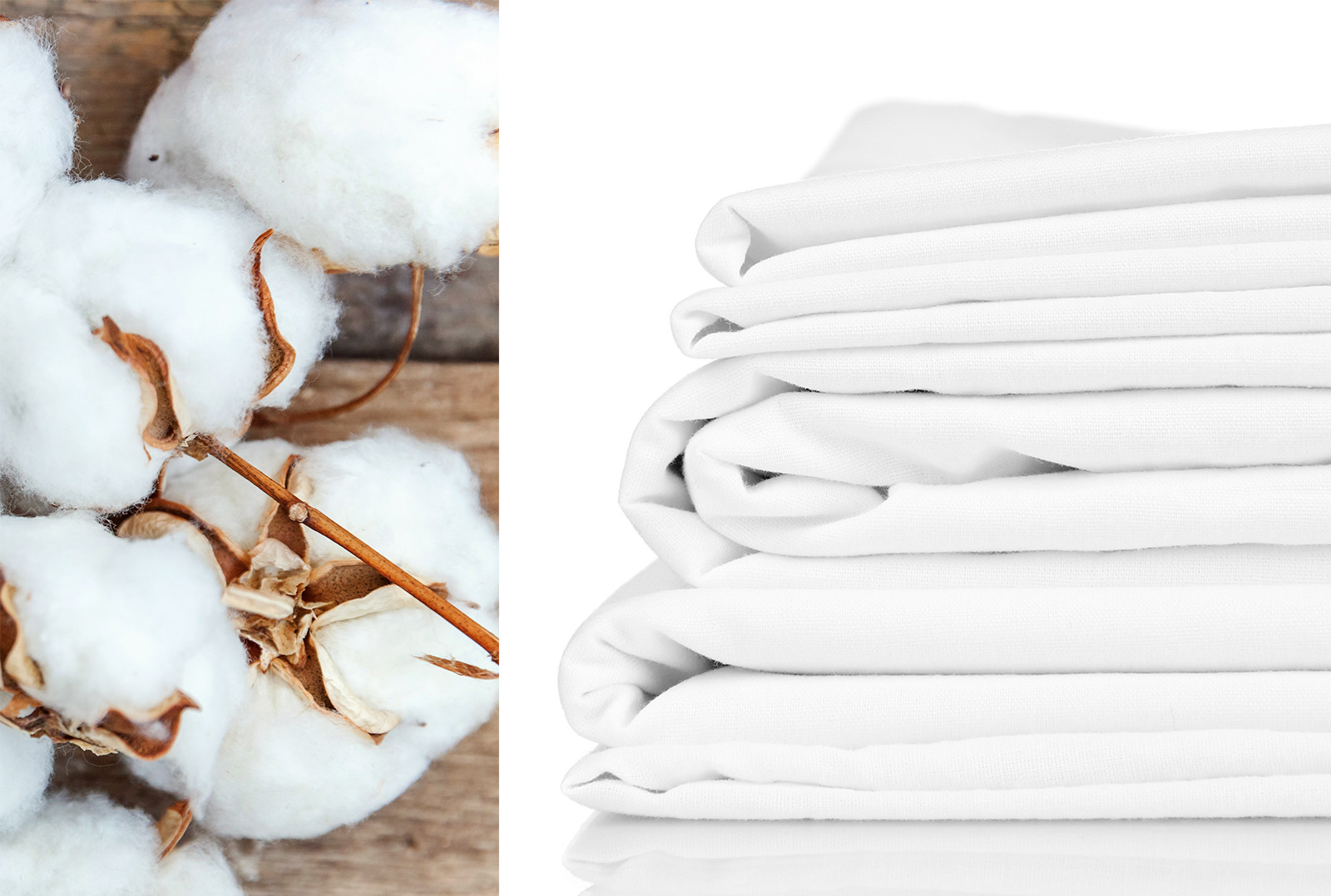Top 14 Best Organic Cotton Sheets Options What To Know Before Ing